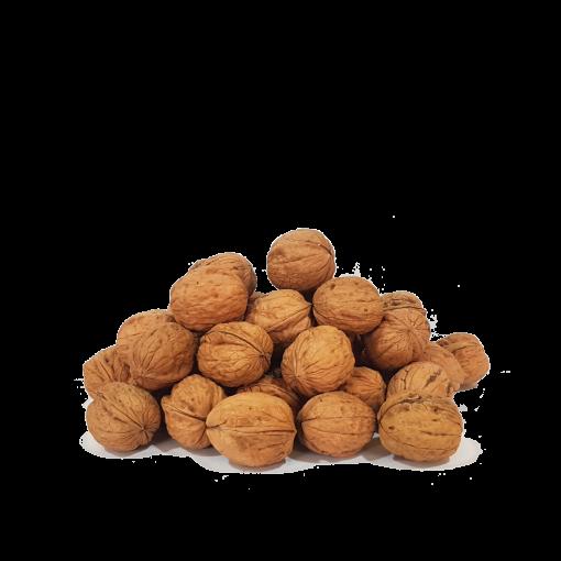 comprar nueces españolas productor de nueces