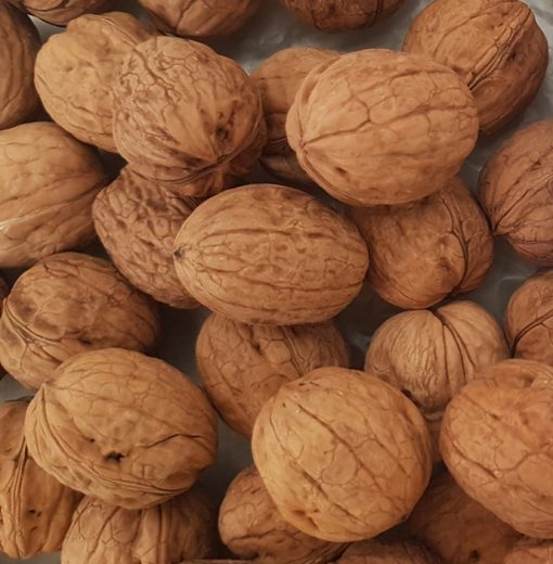 productor de nueces españa. comprar nueces online frutos secos